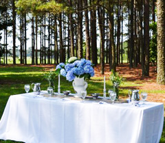 Table Set-Up under the pines
